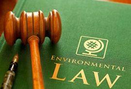 300x205-Environmental-Law-300x205